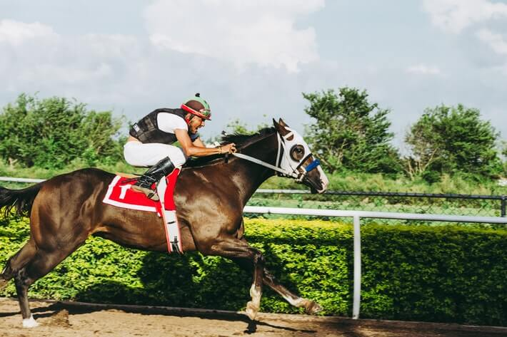Horse Racing Facts - Featured Image 2