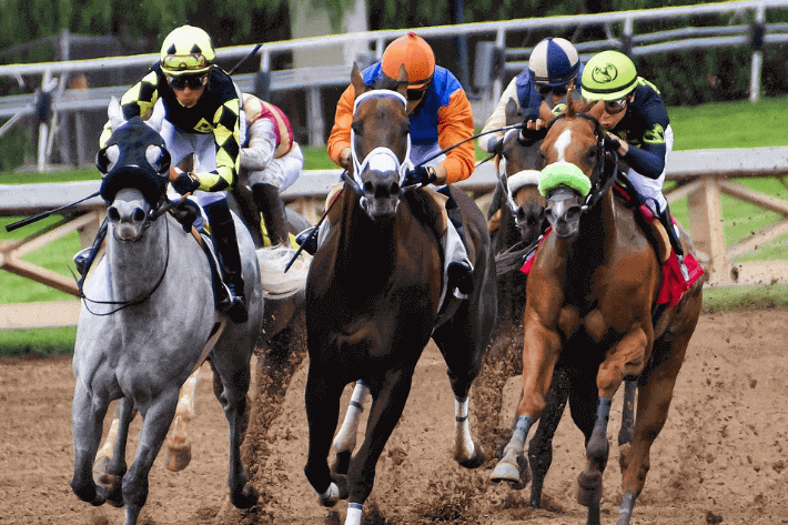 Tote Betting Guide - Featured Image